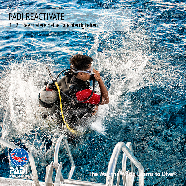 PADI Reactivate Programm
